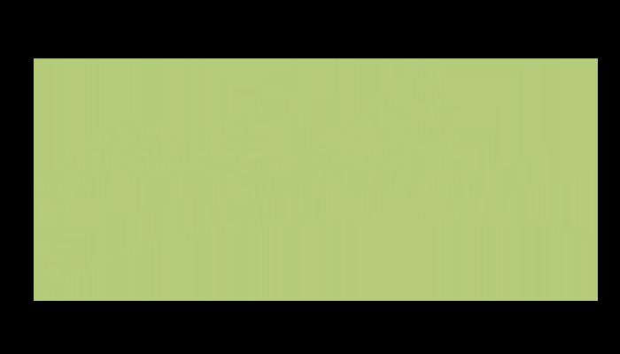 Puntarella